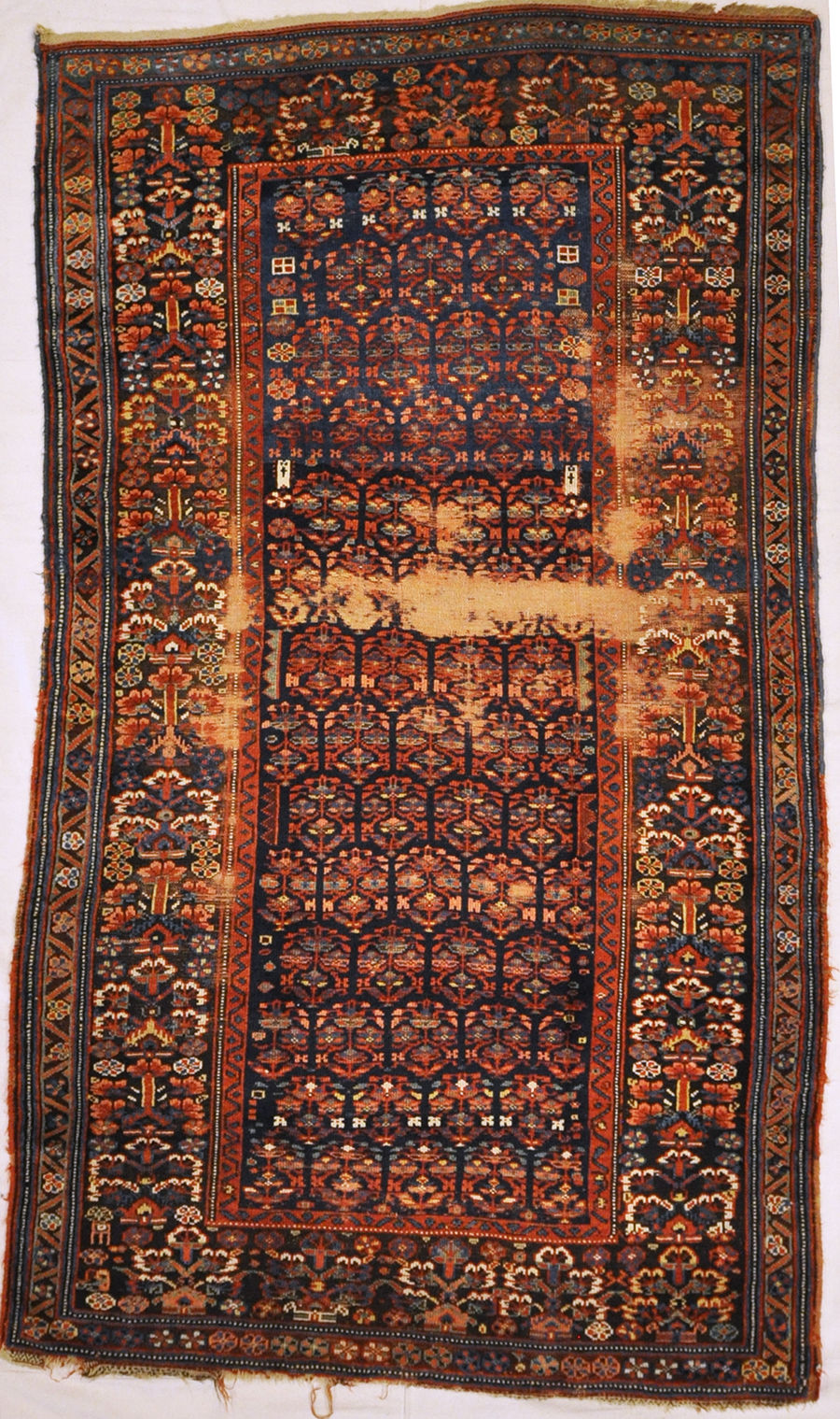 Shahsavan Rug Rugs and More