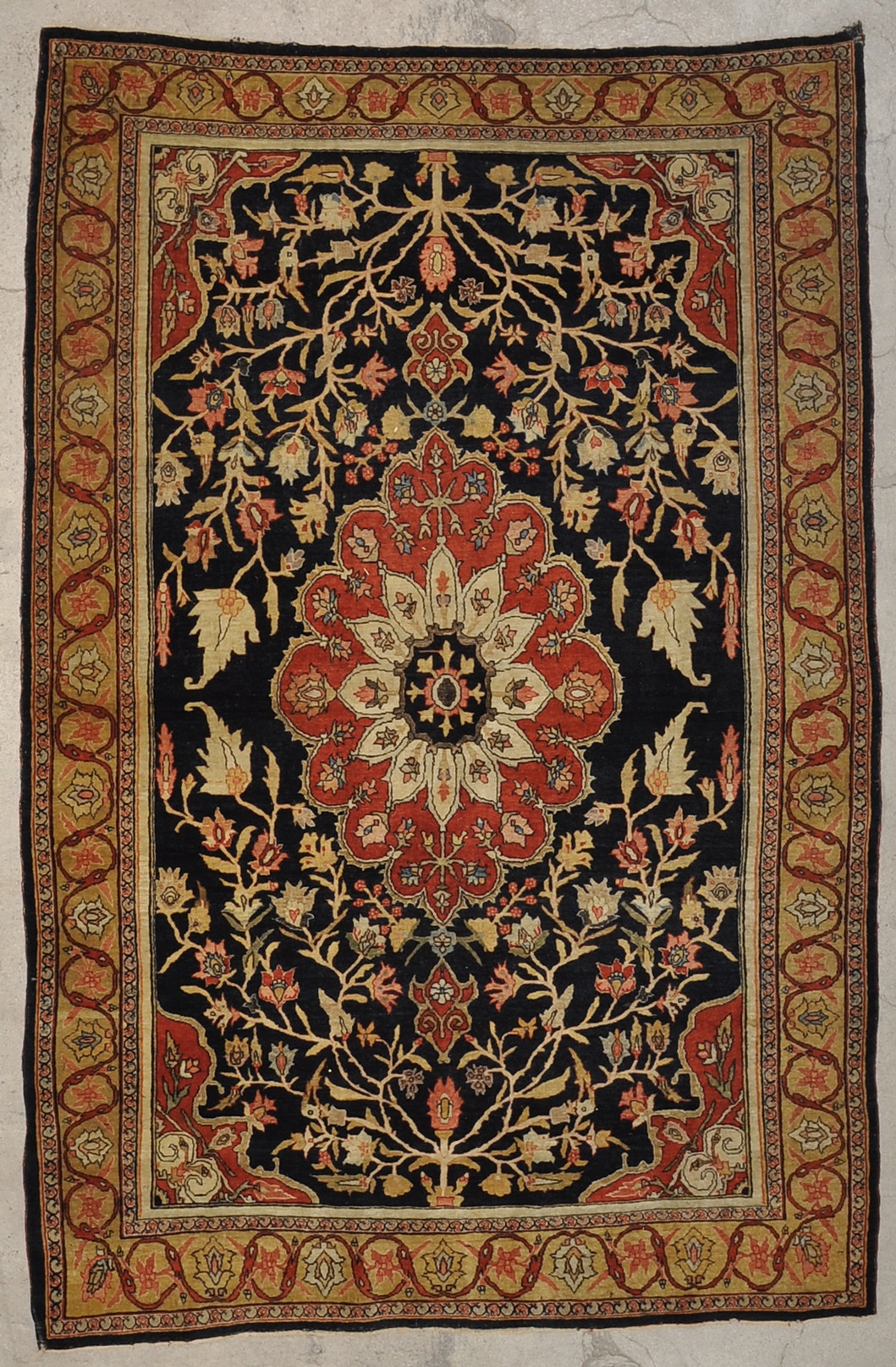 Antique Bijar Rug rugs and more oriental carpet 33662-